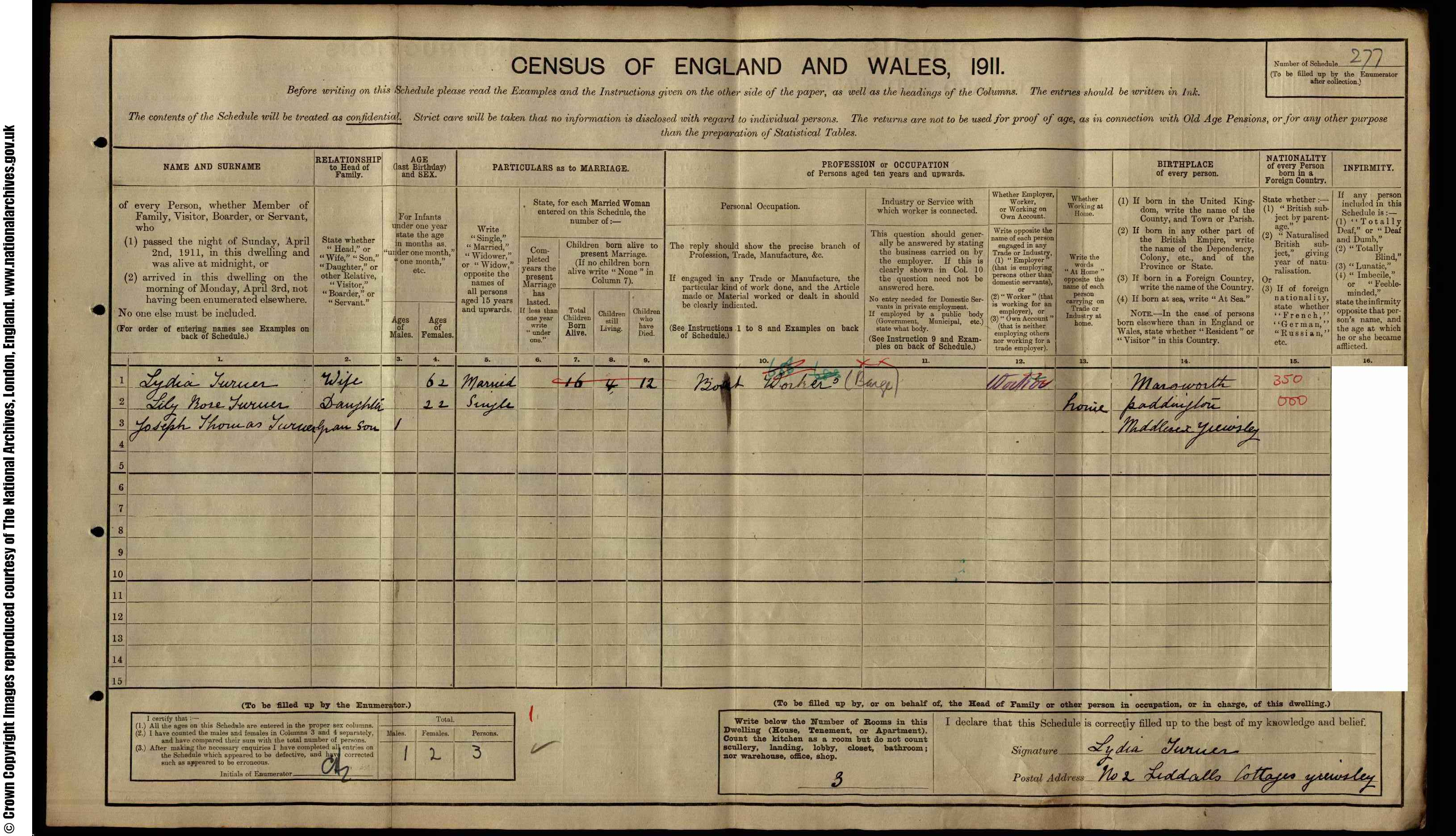 1911 England Census Record for Lydia Turner